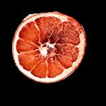 Dehydrated Fruit Wheels